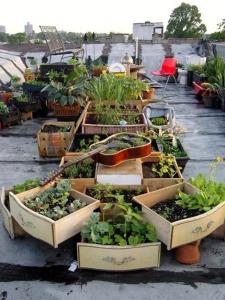 Woonbog balkon terras groen 03
