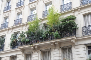 Woonbog balkon terras groen 01