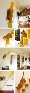 Woonblog kat trap cat stairs