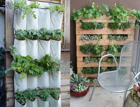 Tuinieren Op Balkon : Tuinieren zonder tuin u woon