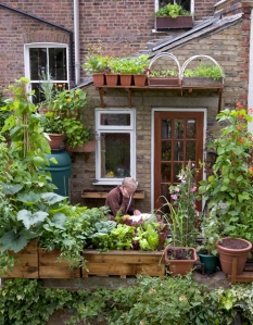 Woonblog terras balkon moestuin 05