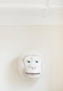 Appartement antwerpen monkeyhead 02