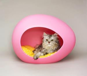 Moderne kattenmand