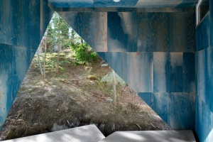 Hout-interieur-inspiratie-01